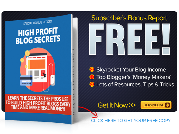 Build High Profit Blogs